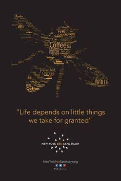 Life depends on the little things we take for granted. #beekeepingbusiness #beekeepinggrants