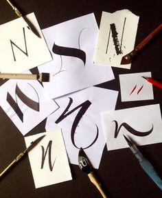 411 отметок «Нравится», 16 комментариев — Rachel Yallop (@rachelyallopcalligraphy) в Instagram: «N. #calligraphy #handlettering #differenttools #differentstyles #fun» Calligraphy Signs, Caligraphy, Cool Lettering, Hand Lettering, School Projects, Fonts, Typography, Shapes, Ink