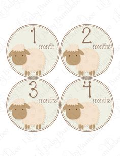 Maybe next time Sheep Nursery, Lamb Nursery, Baby Boy Shower, Baby Shower Gifts, Baby Showers, Monthly Baby Photos, Baby Month Stickers, Baby Lamb, My Little Baby