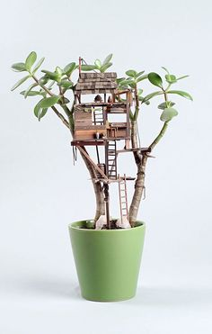 jedediah corwyn voltz builds tiny treehouses in succulent and cacti plants for his latest series of work titled 'somewhere small', jedediah corwyn voltz has crafted tiny treehouses around succulents and cacti. Garden Terrarium, Succulents Garden, Mini Mundo, Miniature Trees, Fairy Doors, Fairy Houses, Tree Houses, Kintsugi, Cactus Plants