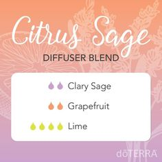 Learn about doTERRA lime essential oil uses with DIY and food recipes. I explain all about doTERRA lime and all the ways you can and how to use it. Clary Sage Essential Oil, Grapefruit Essential Oil, Essential Oil Uses, Doterra Grapefruit, Doterra Diffuser, Essential Oil Diffuser Blends, Doterra Essential Oils, Doterra Blends, Yl Oils