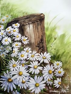 40 Easy Acrylic Painting Ideas for Beginners to Try – FeminaTalk Watercolor Landscape, Watercolor Flowers, Watercolor Paintings, Daisy Painting, Spring Painting, Arte Latina, Simple Acrylic Paintings, Fence Art, Beginner Painting