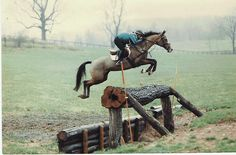 some horses jump, others fly