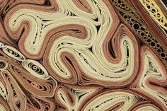 More anatomical cross sections made from paper quilling. From discovery.com