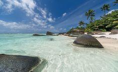 Morze, Palmy, Kamienie