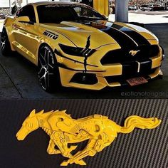 Luxury Cars For Women Ford Mustangs 70 Ideas For 2019 – – Sport Cars Shelby Mustang, Mustang Cars, Shelby Gt500, Mustang Horses, Lamborghini Gallardo, Carros Lamborghini, Lamborghini Cars, Ferrari Car, Bugatti