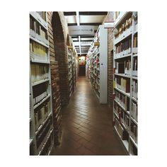 Libri luci scorci silenzi #library #librarytime #librarian #books #bookstagram #bookphotography #bibliophile #research #silence #scorci #details #unimi #university #cagranda #secondacasa #semprequi #guidedtours #culturalheritage #art #architecture #renaissanceart #arcades #milano #milanobella #milanodavedere #igersmilano #igerslombardia #liveauthentic #vscocam #vscomoment