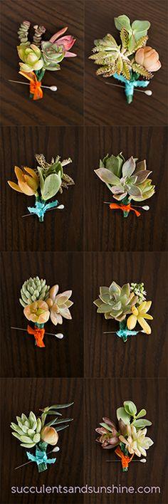 succulents boutonniere