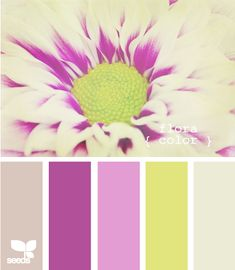 Love this spring/summer color palette to inspire your clothing choices Colour Pallette, Color Palate, Colour Schemes, Color Patterns, Color Combos, Soothing Paint Colors, Color Violeta, Color Me Mine, Baby Room Colors