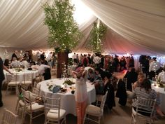 Tree Lining Tree Line, Wedding Venues, Table Decorations, Home Decor, Wedding Reception Venues, Wedding Places, Decoration Home, Room Decor, Home Interior Design