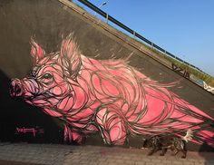street art grafitti Dzia porco