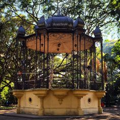 Jardim da Luz (Public Garden) - Sao Paulo, Brazil
