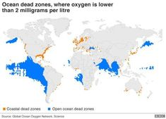 Marine dead zones—areas where the deep water is so low in dissolved oxygen that sea creatures can't survive. South Of The Border, Deep Water, Antique Maps, Genre, Sea Creatures, Ocean, History, Abstract, Cards