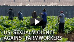 The Vulnerability of Immigrant Farmworkers in the US to Sexual Violence and Sexual Harassment