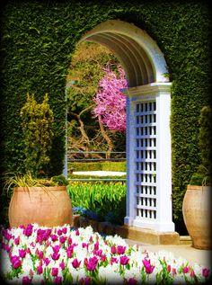 Butchart Gardens, Victoria B.C. Canada