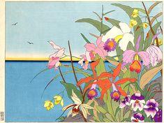 Fleurs Des Iles Lointaines. Mers De Sud 1940 - Поль Жакуле