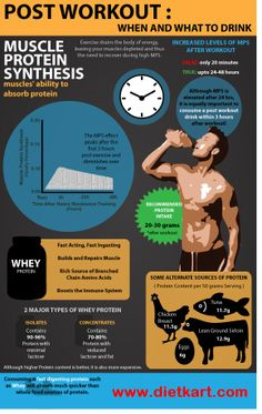 Best Pre workout Infographic