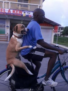 Goodboye on a bike. http://ift.tt/2EcPcaH