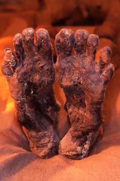 Feet of Pharaoh Ramses I.  He resided unrecognized for many years in a museum in Niagara Falls, Canada.  (It is possible that Rameses I is the great-grandfather of the biblical Moses).