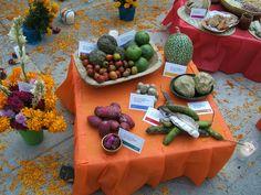 Frutas típicas de México: chilacayote, tuna roja, xoconostle, jinicuil, zapote negro, ciruela criolla