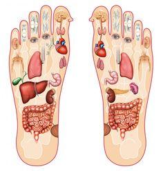 Pourquoi le massage des pieds aide à s'endormir ? Et pourquoi c'est une très bonne chose pour la santé physiologique...