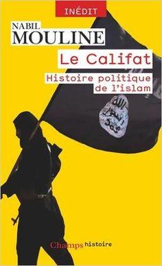 Amazon.fr - Le Califat, histoire politique de l'Islam - Nabil Mouline - Livres