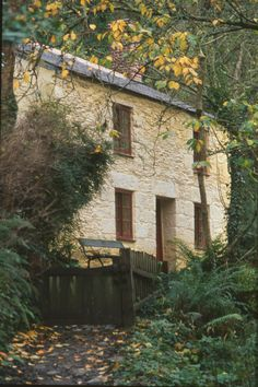 If you go down to the woods today...... Frenchman's Creek #Woods Landmark Trust #Halloween #Spooky Holiday Rental #Britain  http://www.landmarktrust.org.uk/search-and-book/properties/frenchman's-creek-7584