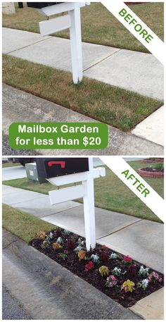 This mailbox garden project by a Garden Club member cost less than $20! Join the Garden Club now and get $5 dollars off your next lawn & garden purchase!