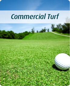"""I wonder how commercial turf suppliers get golf courses so well-manicured. It is amazing to me that they can get grass so short to be so green. I guess that's why they call it a """"green."""""""
