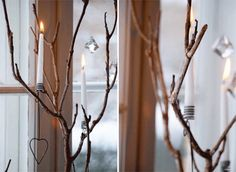 Simple Christmas lights on branches in the window