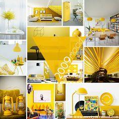 MEET_50 anni Pantone_MOOD mimosa 2009 pantone
