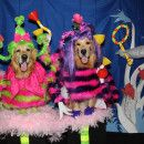 """Cutest Whos from """"Horton Hears a Who"""" Dog Costumes"""