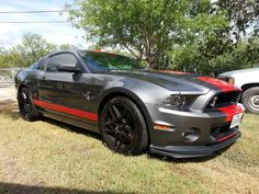2014 Shelby GT 500 Cobra! This will be my first bought-not-out-of-necessity car! I love this gunmetal gray. The red stripe is alright, but I'm gonna have my glossy, pumpkin orange!