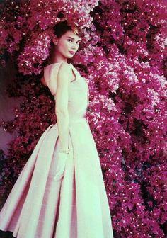Audrey Hepburn, Norman Parkinson