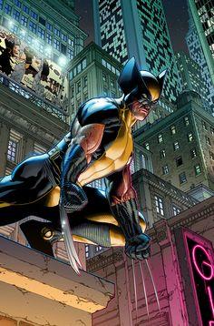 Wolverine by Steve McNiven