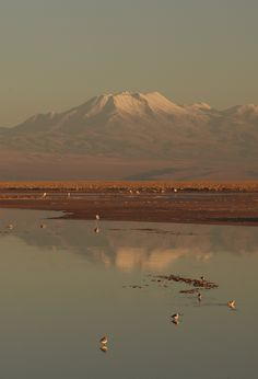#atacama #desert #journey #adventure