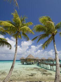 Vacation In Fiji.