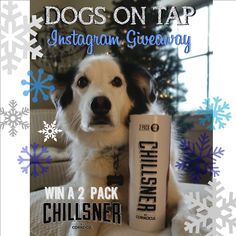 Dogs on Tap has reached 3000 followers on Instagram, to celebrate with the help of our friends at @corkcicle are helping us giveaway a two pack of their Chillsner! Head over to instagram.com/dogsontap to find out how to enter!