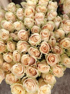 Rose called 'Charmant' gorgeous nude shade. Sold in bunches of 20 stems from the Flowermonger the wholesale floral home delivery service.