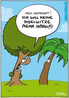 baum palme inselwitze schreien insel bäume