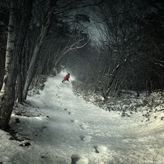 A red coat brightens up a snowy forest scene and your wall in the Photographers Lane Into the Winter Forest Wall Art . The gallery-wrapped wall art is. Winter Forest, Snowy Forest, Charles Perrault, Paris Wall Art, Snow Scenes, Winter Scenes, Winter Landscape, Red Riding Hood, Artist Canvas