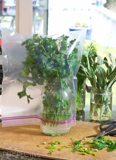 How to Keep Herbs Fresh by A Spicy Perspective ~ Great kitchen tips!