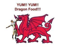 Welsh Words, Putting Others First, Welsh Dragon, Cymru, Dad Jokes, Sarcasm, Wales, Evans, Dragons