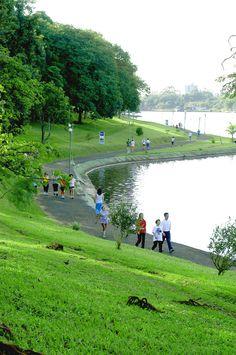 Lago Igapó, Londrina, Paraná