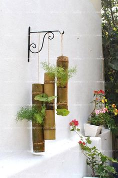 Bamboo Planters – The MySunnyBalcony Online Garden Shop Bamboo Planter, Bamboo Art, Bamboo Crafts, Planters, Colorful Succulents, Hanging Succulents, House Plants Decor, Plant Decor, Buy Flowers Online