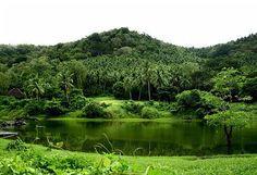 Costa Aguada Nature Resort in Guimaras, the Philippines  (Photo by : Tim Libunao)