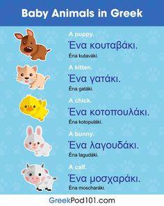 Baby animals in Greek Greek Phrases, Greek Words, Greek Animals, Greek Alphabet, Alphabet Code, Romanian Language, Greek Quotes, Greek Sayings, Learn Greek