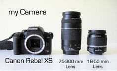 FAQs: Camera   MADE << This is a really fantastic guide on DSLR cameras for people getting started :)