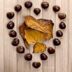 #autumnleaves #chestnuts