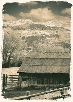 An old Turkey Farm I found on the backroads of Colorado travelling over Lizard Head Pass and down into Telluride. It looked as if there should be a man and his grandchildren running around. I stopped and imagined what this life must have been like in the 1800's.